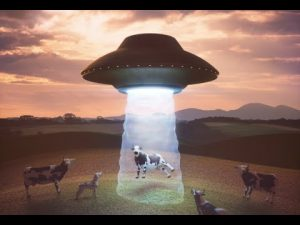 alien cows